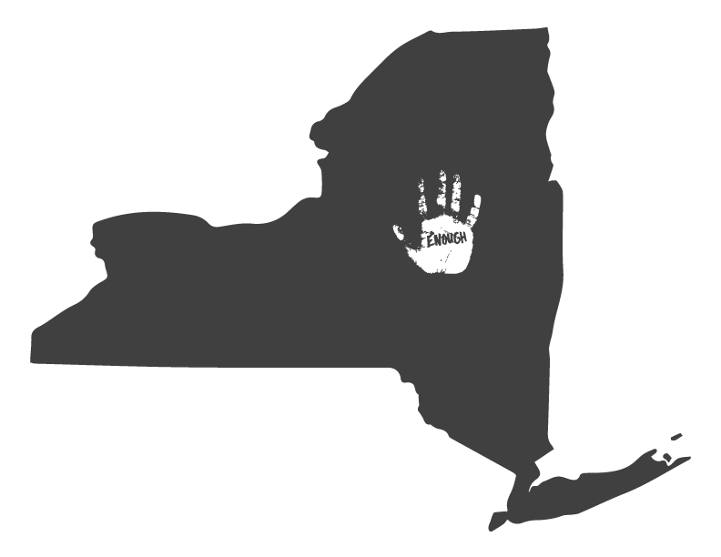 ny state map